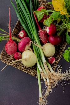 Side view of basket plate of vegetables as radish and scallion on maroon background with copy space