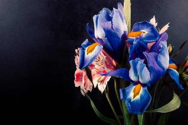 Side view of a bouquet of pink and purple color alstroemeria and iris flowers on black background with copy space