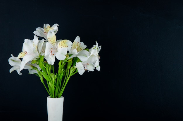 Side view of a bouquet of white color alstroemeria flowers in white vase on black background with copy space