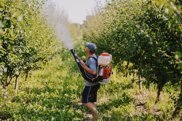 Side view of caucasian mature peasant in working clothes, hat and with modern pesticide spray machine on backs spraying bugs in orchard.