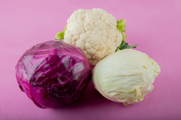 Side view of different types of cabbage as cauliflower white and purple ones on purple background with copy space