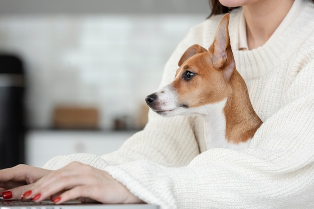 Side view of dog held by woman working on laptop