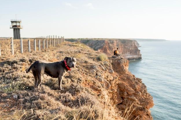 海岸で彼の所有者の隣を散歩している側面図の犬
