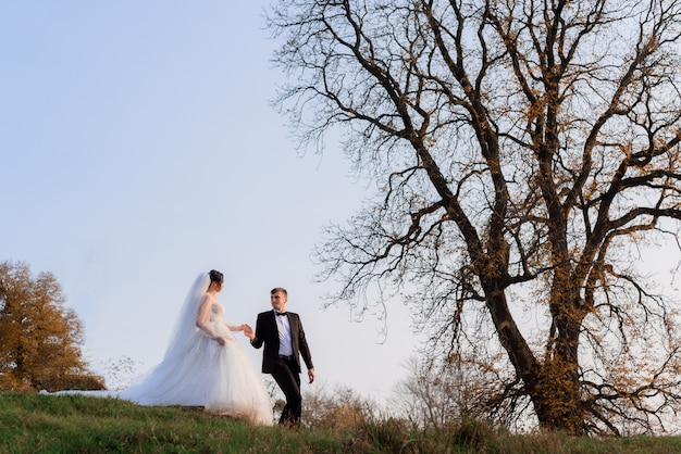 Side view of elegant newlyweds walking holding hands in autumn park