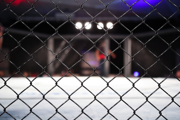 Side view of empty mma arena under light, octagon grid.