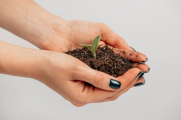 Side view of female hands holding soil and little plant