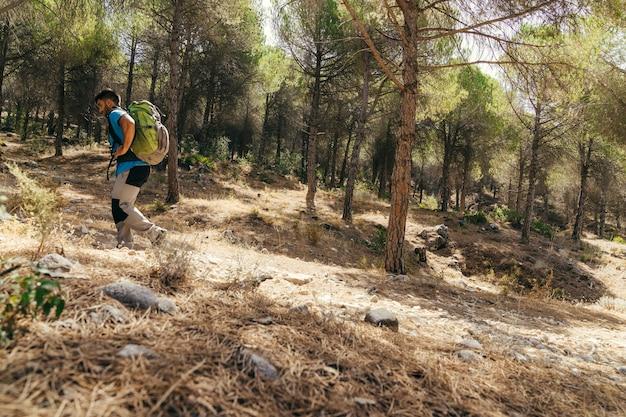 Vista laterale dell'escursionista che esplora la natura