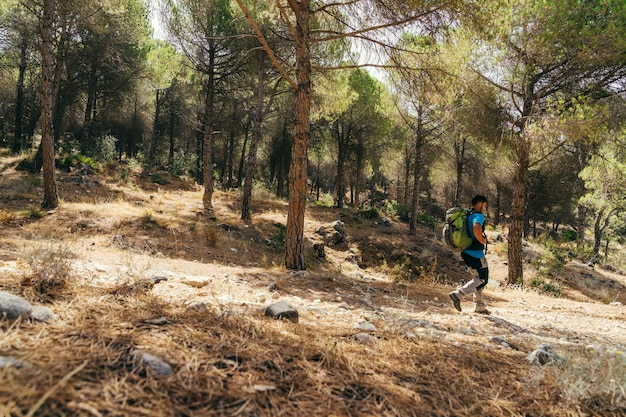 Vista laterale dell'escursionista che cammina nella foresta