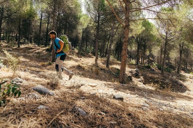 Vista laterale dell'escursionista che cammina nella natura