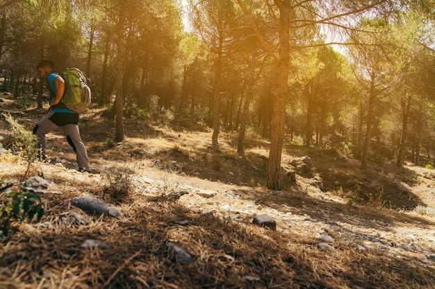 Vista laterale dell'escursionista con zaino nella foresta