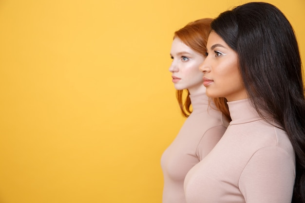 Side view image of concentrated young two ladies