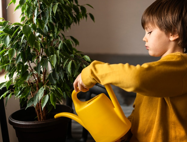 Side view of little boy watering plant at home