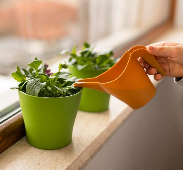 Side view of little kid watering plants