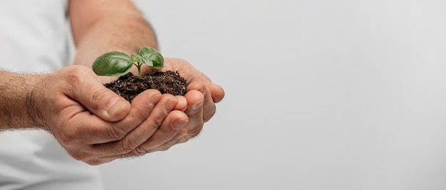 Side view of male hands holding soil and plant with copy space