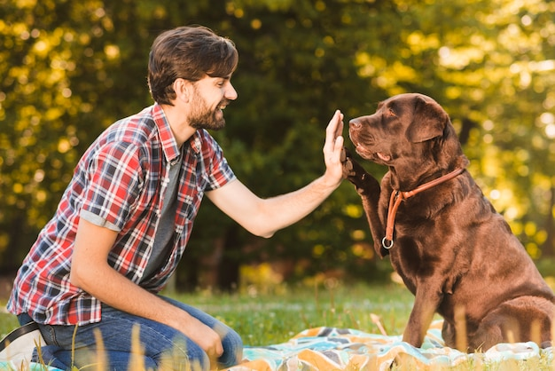 Side view of a man giving high five to his dog in garden