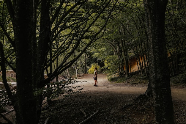 Side view of a man in the middle of a lush forest while looking away
