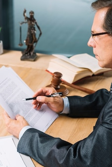 Side view of mature male lawyer reading document in the courtroom