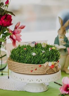 Side view of novruz national azerbaijan holiday spring celebration concept wheat grass semeni on ceramic stand on green wall