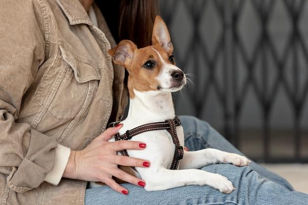 Вид сбоку на собаку, которую держит женщина