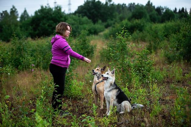 Вид сбоку на самку в яркой толстовке с капюшоном, тренирующей послушных собак, проводя время в зеленом поле на природе