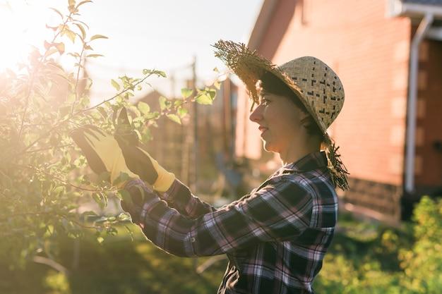 焦点を当てた若い白人女性の庭師の側面図は、木から不要な枝や葉を切り取ります