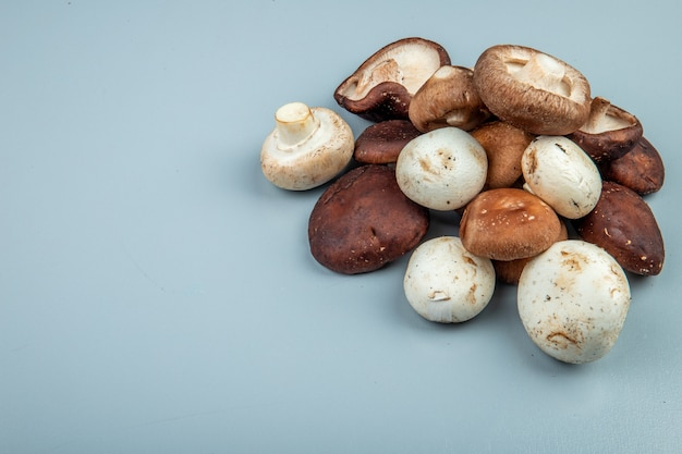 Вид сбоку свежих грибов на голубом с копией пространства