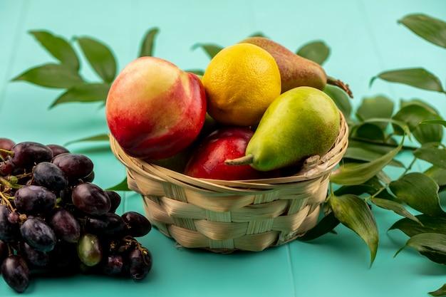 Вид сбоку на фрукты как груша, лимон, персик в корзине с виноградом и листьями на синем фоне