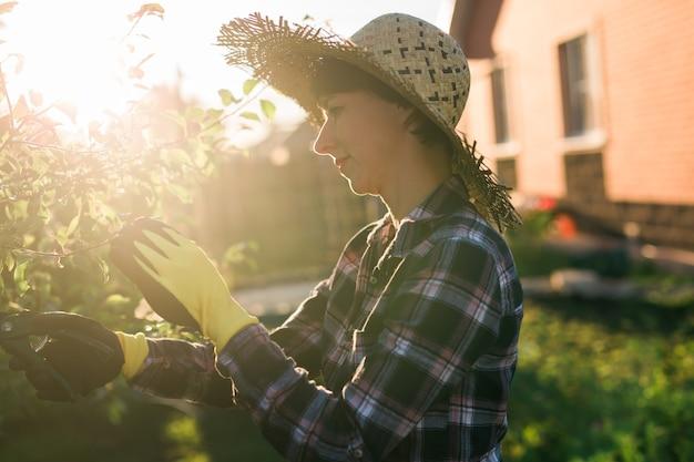 うれしそうな若い白人女性の庭師の側面図は、庭でリンゴの木を処理しながら、剪定ばさみで木から不要な枝や葉を切り取ります。ガーデニングと趣味のコンセプト