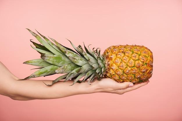 ピンクの背景の上に隔離されている間、大きな新鮮なパイナップルを保持しているヌードマニキュアときれいな女性の手の側面図。人間の手と食べ物の写真