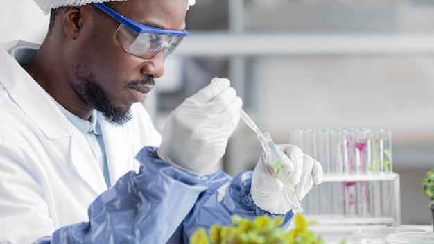 Вид сбоку исследователя в лаборатории биотехнологии с растением и пробиркой