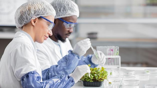 식물이있는 생명 공학 실험실 연구원의 측면보기