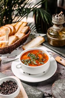 Вид сбоку традиционного русского овощного борща в миску белого