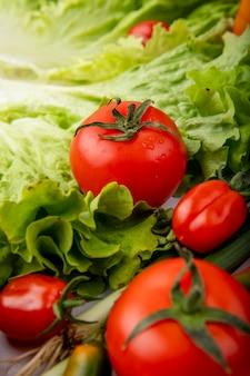トマトレタスねぎとして野菜の側面図
