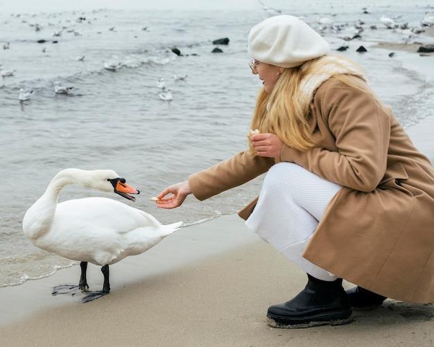 Вид сбоку женщины, кормящей лебедя на пляже зимой