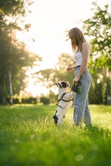 都市公園でフレンチブルドッグを訓練している若い女性の側面図。後ろ足で立っている純血種のペット、雌犬の飼い主の手からおやつを嗅ぐ、背景に夏の夕日。動物調教の概念。