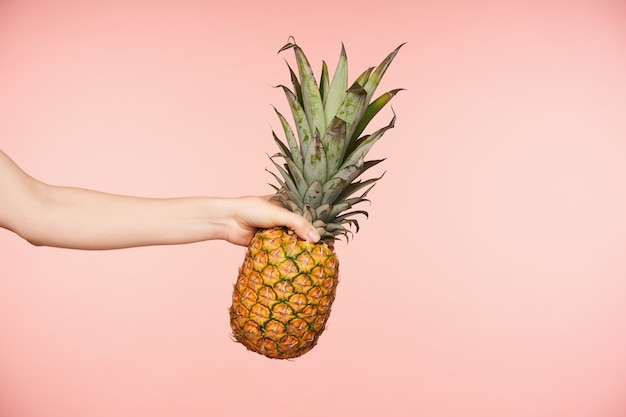 Side view of pretty woman's hand with nude manicure squeezing fingers while holding big fresh pineapple, being isolated against pink background