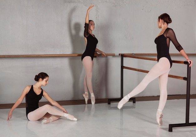 Side view of professional ballerinas training together with leotards and pointe shoes