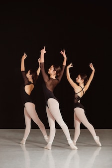Side view of professional ballet dancers in leotards