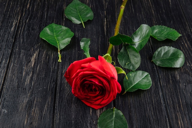 Side view of red color rose with green leaves isolated on dark wooden background