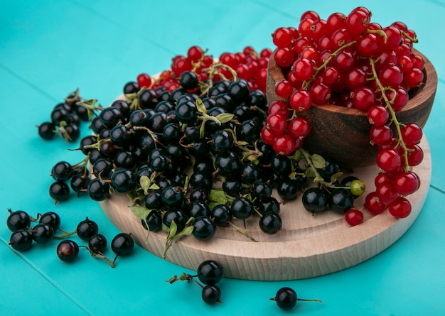 Side view red currants in a bowl with black currants on a blackboard on a light blue background