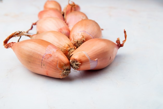 Side view of shallots on white background with copy space