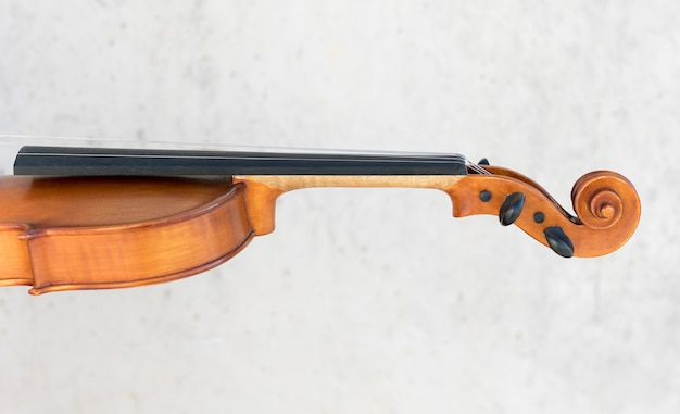 Side view of violin