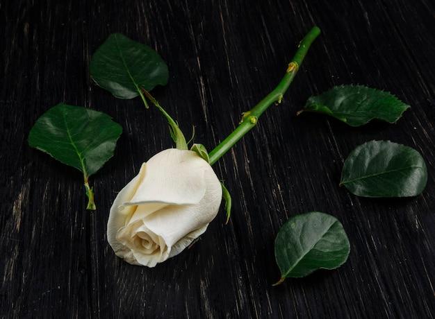 Vista laterale della rosa bianca di colore con le foglie verdi isolate su fondo di legno scuro Foto Gratuite