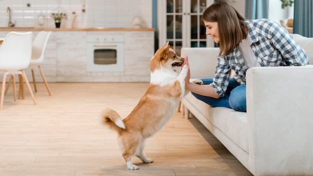 Side view of woman on couch high-fiving her dog