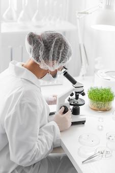 芽の側面図女性実験