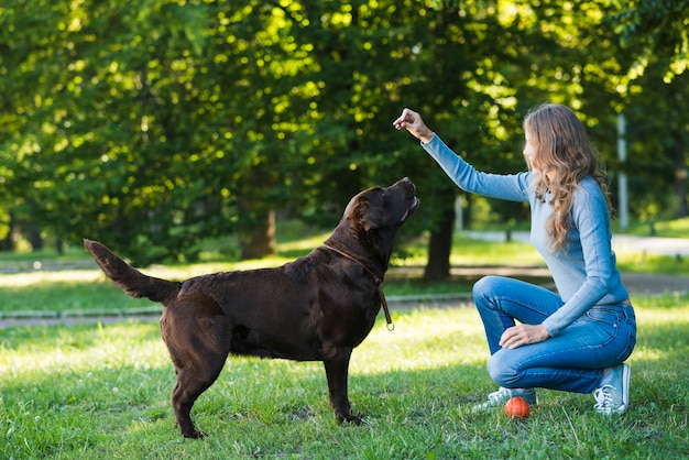 Side view of a woman playing with her dog in park