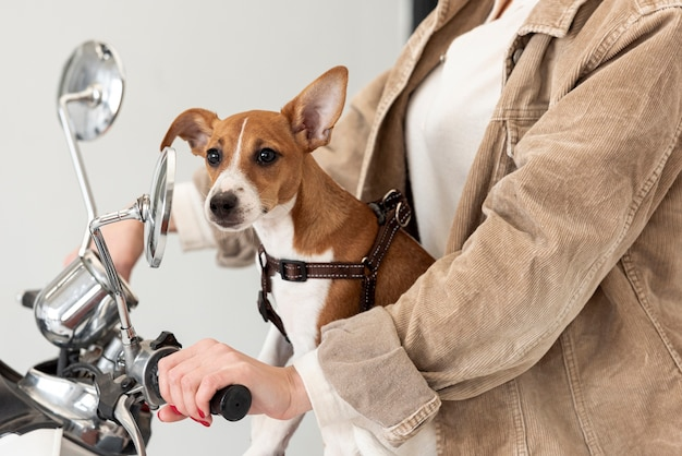 Vista laterale della donna su scooter con il suo cane