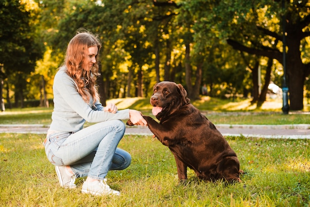 Side view of a woman shaking dog's paw in garden