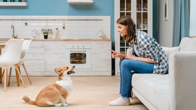 Side view of woman training her dog to sit