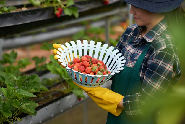 Side view of young female farmer holding a bowl of strawberries